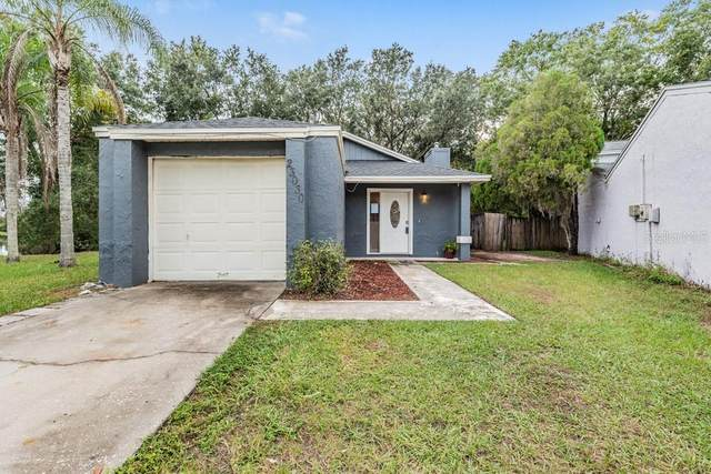 23030 Clearwater Place, Land O Lakes, FL 34639 (MLS #W7838879) :: Everlane Realty