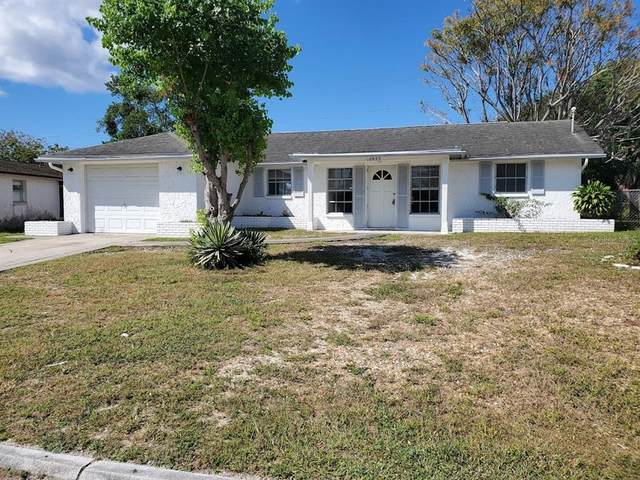 10923 Premier Avenue, Port Richey, FL 34668 (MLS #W7838884) :: Orlando Homes Finder Team