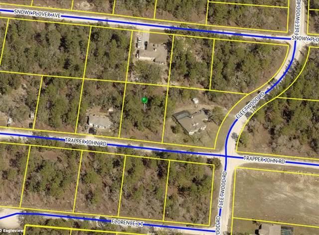 13053 Trapper John Road, Weeki Wachee, FL 34614 (MLS #W7838937) :: Everlane Realty