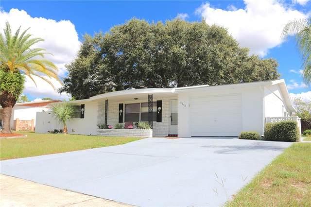 11640 Rocks Lane, Port Richey, FL 34668 (MLS #W7838946) :: Blue Chip International Realty