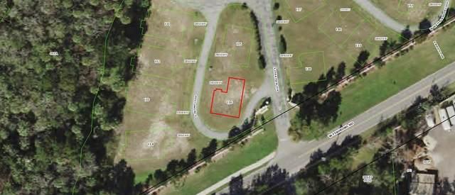 4865 S Tramp Loop #136, Homosassa, FL 34448 (MLS #W7838951) :: Global Properties Realty & Investments