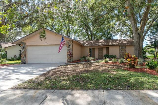 8626 White Springs, New Port Richey, FL 34655 (MLS #W7838954) :: Griffin Group