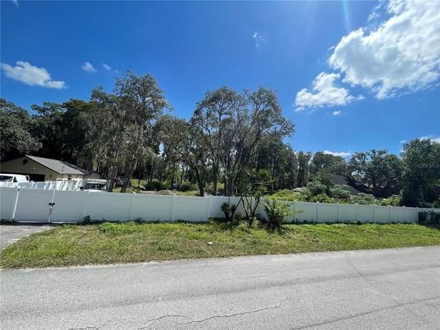 Moon Lake Circle, New Port Richey, FL 34654 (MLS #W7838984) :: Delgado Home Team at Keller Williams