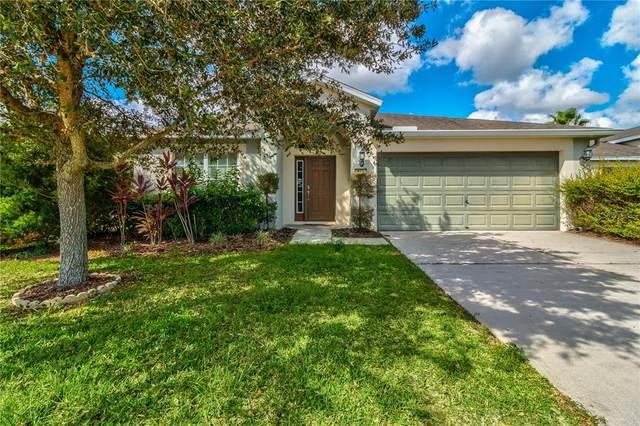 711 Alpine Thistle Drive, Brooksville, FL 34604 (#W7839002) :: Caine Luxury Team
