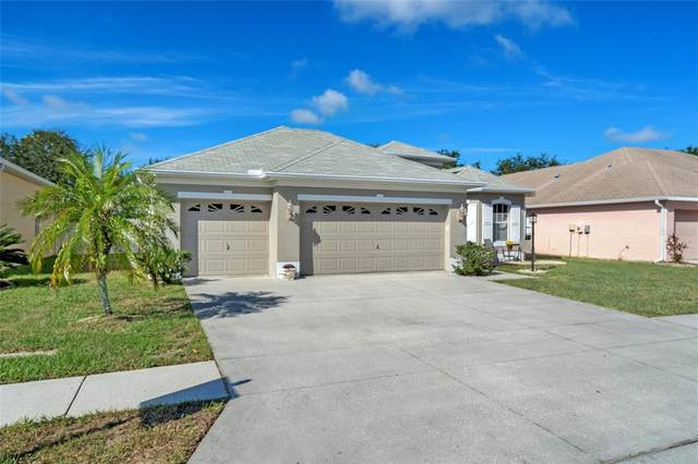 14551 Beauly Cir, Hudson, FL 34667 (MLS #W7839004) :: Global Properties Realty & Investments