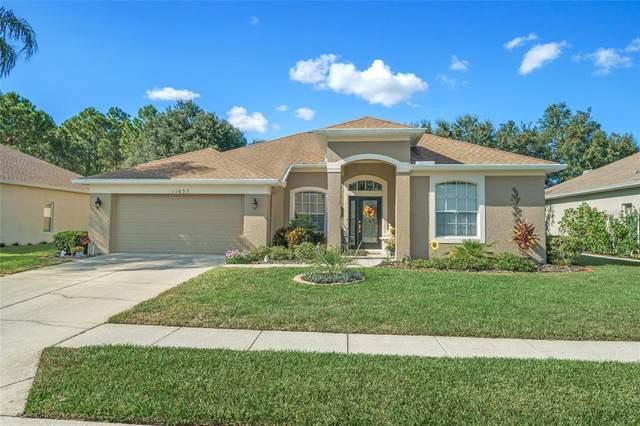 11655 SE Fairfield Court, Spring Hill, FL 34609 (#W7839027) :: Caine Luxury Team