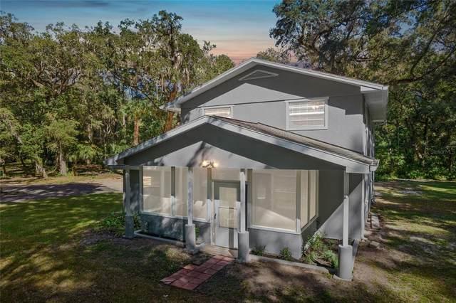 25027 Holden Drive, Brooksville, FL 34601 (#W7839036) :: Caine Luxury Team