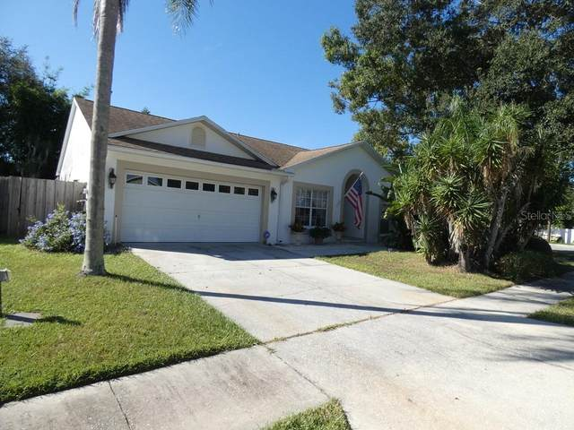 2005 Rountree Court, Clearwater, FL 33763 (MLS #W7839064) :: Bob Paulson with Vylla Home
