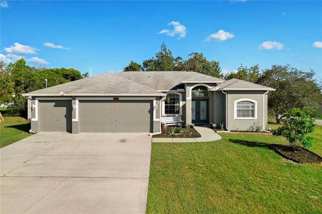5438 Colchester Avenue, Spring Hill, FL 34608 (MLS #W7839084) :: Godwin Realty Group