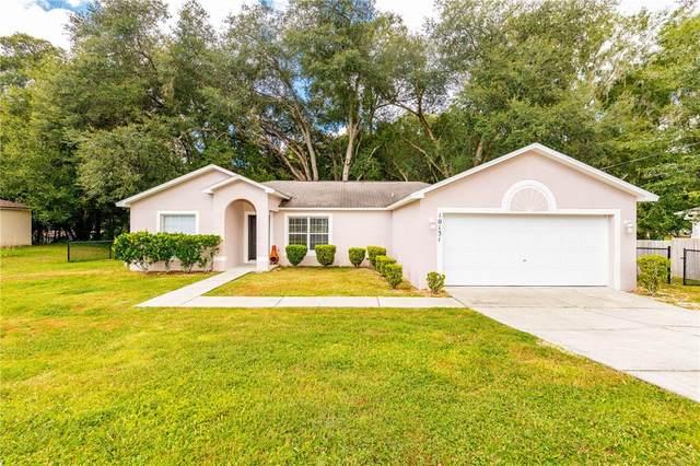 10131 Foley Street, Brooksville, FL 34601 (MLS #W7839088) :: Godwin Realty Group