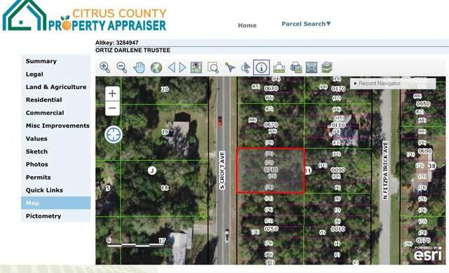 153 N Croft Avenue, Inverness, FL 34453 (MLS #W7839091) :: CENTURY 21 OneBlue