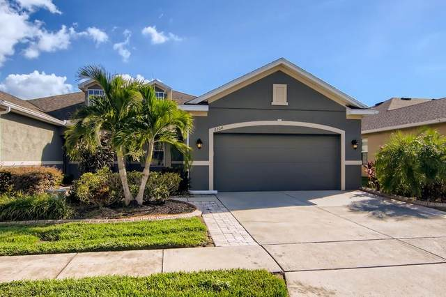 2204 Parrot Fish Drive, Holiday, FL 34691 (MLS #W7839155) :: Griffin Group