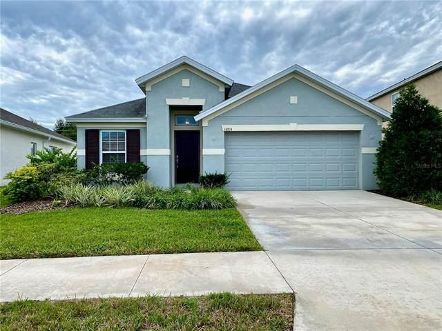 14204 Finsbury Drive, Spring Hill, FL 34609 (MLS #W7839165) :: Lockhart & Walseth Team, Realtors