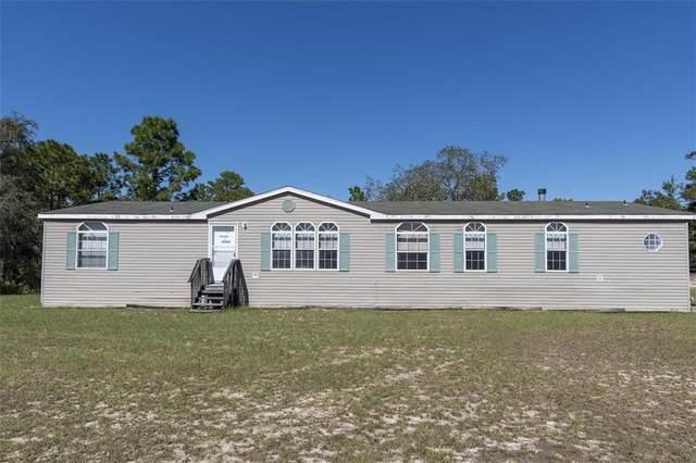 15005 Buffalo Lane, Brooksville, FL 34613 (MLS #W7839172) :: Charles Rutenberg Realty