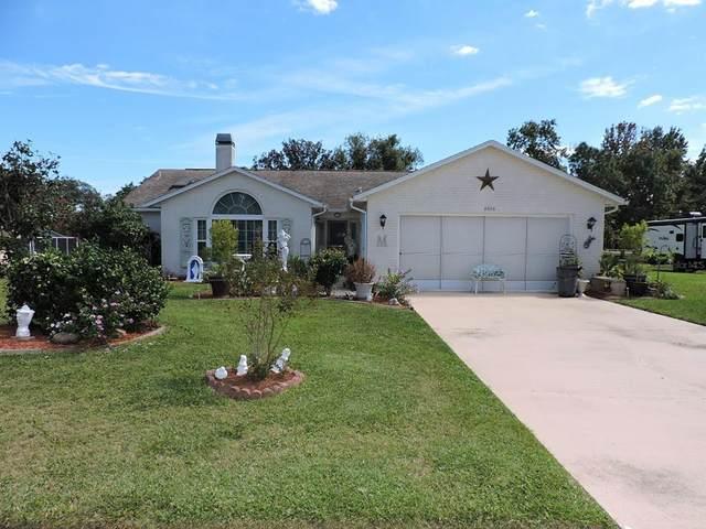 6056 Schalekamp Drive, Spring Hill, FL 34609 (MLS #W7839198) :: Expert Advisors Group
