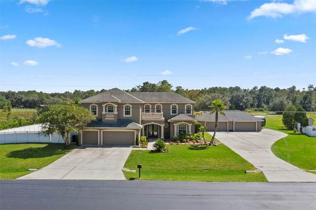 8352 Woodleaf Boulevard, Wesley Chapel, FL 33544 (MLS #W7839199) :: Everlane Realty