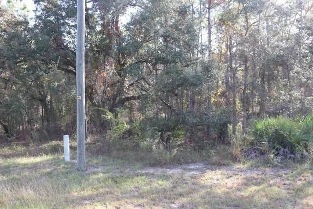 16144 Mount Sparrow Road, Weeki Wachee, FL 34614 (MLS #W7839212) :: Everlane Realty