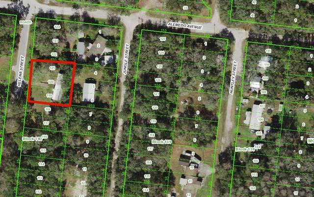 Jungle Street, New Port Richey, FL 34654 (MLS #W7839226) :: Delgado Home Team at Keller Williams