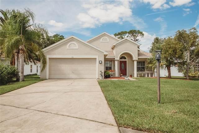 358 Rainforest Court, Oldsmar, FL 34677 (MLS #W7839259) :: Pristine Properties