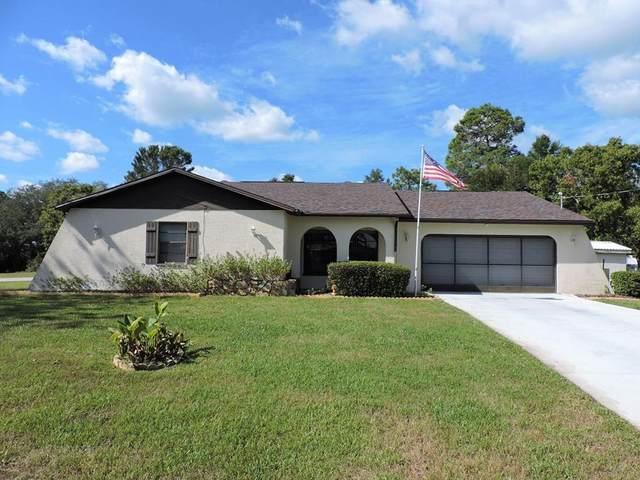 4293 Dewberry Street, Spring Hill, FL 34608 (MLS #W7839265) :: Expert Advisors Group