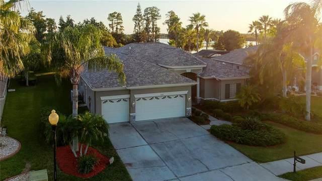 10002 Green Ivy Drive, Trinity, FL 34655 (MLS #W7839282) :: RE/MAX Marketing Specialists