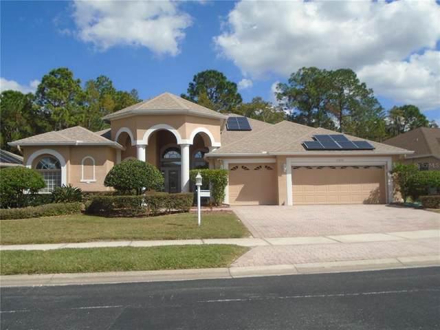 11335 Wedgemere Drive, Trinity, FL 34655 (MLS #W7839283) :: RE/MAX Marketing Specialists