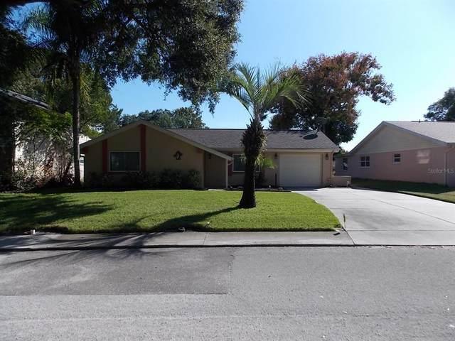 8312 Mill Creek Lane, Hudson, FL 34667 (MLS #W7839308) :: Keller Williams Realty Peace River Partners