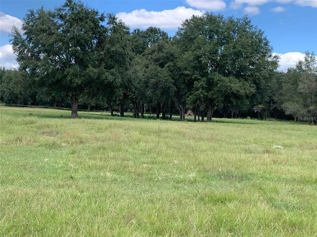 2888 County Rd 546N, Bushnell, FL 33513 (MLS #W7839334) :: RE/MAX Local Expert