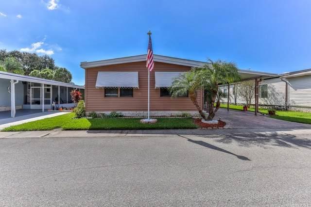 283 Pelican Drive N, Oldsmar, FL 34677 (MLS #W7839341) :: RE/MAX Marketing Specialists
