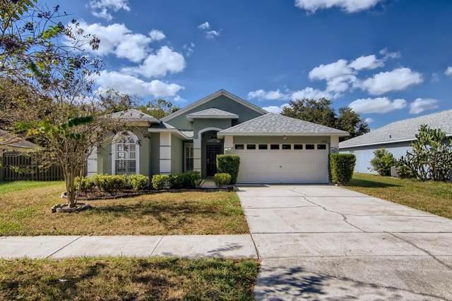 1455 Lake Shore Ranch Drive, Seffner, FL 33584 (MLS #W7839367) :: Stellar Home Sales