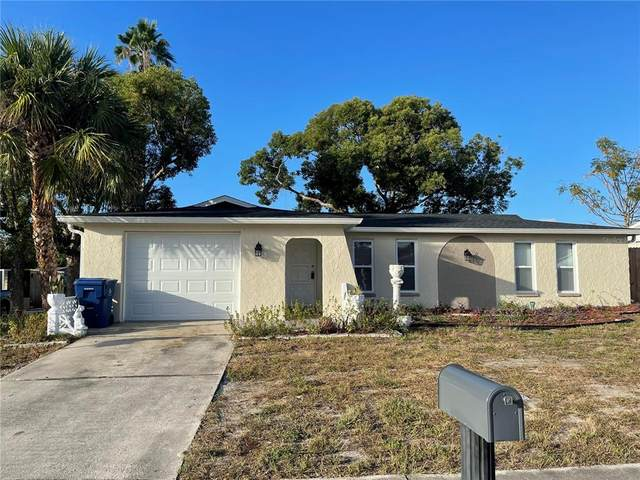 6247 Kentfield Avenue, New Port Richey, FL 34653 (MLS #W7839399) :: Expert Advisors Group