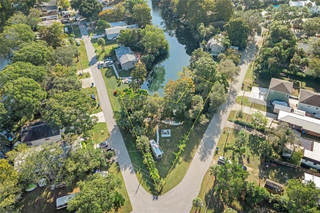 W Richard Drive, Weeki Wachee, FL 34607 (MLS #W7839484) :: The Deal Estate Team | Bright Realty