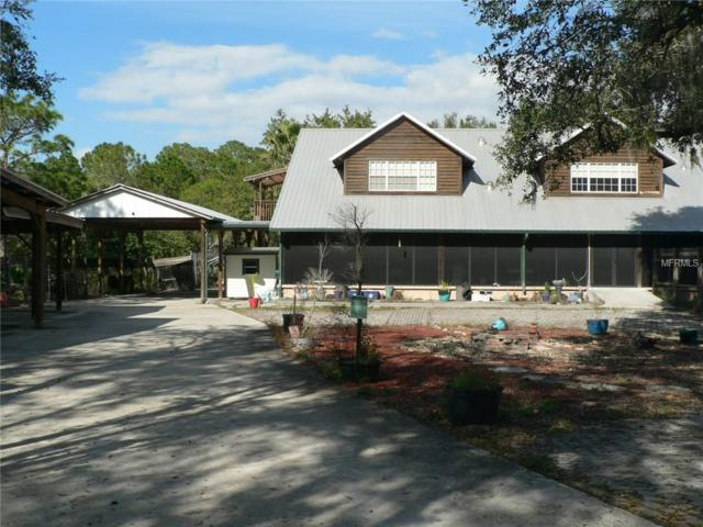 16502 Golf Course Road, Parrish, FL 34219 (MLS #A4187810) :: Medway Realty