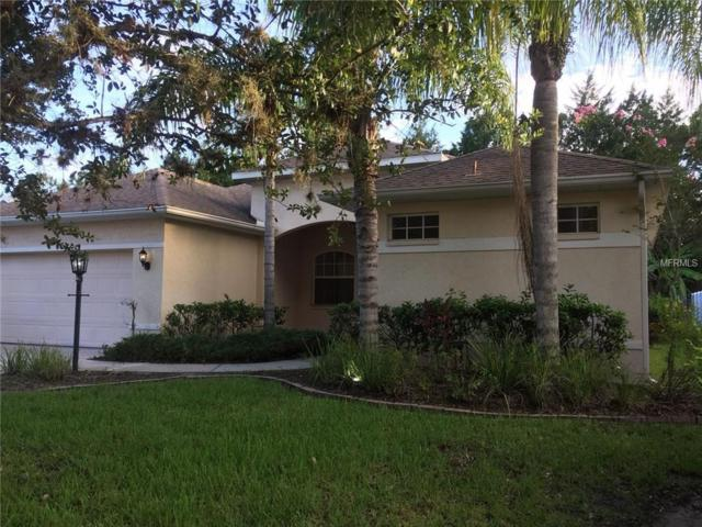 11843 Hollyhock Drive, Lakewood Ranch, FL 34202 (MLS #A4194296) :: TeamWorks WorldWide