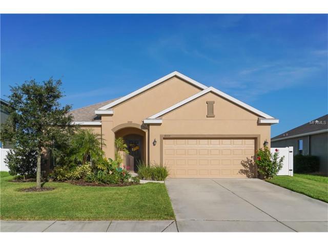 8015 111TH Terrace E, Parrish, FL 34219 (MLS #A4199310) :: Team Pepka