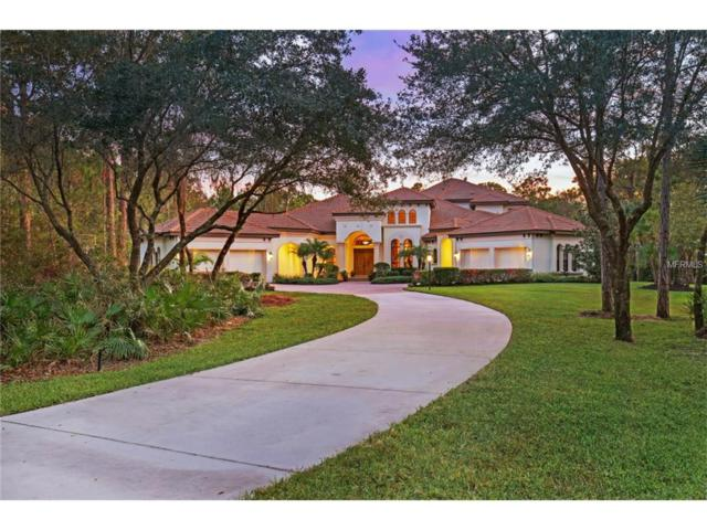 10673 Leafwing Drive, Sarasota, FL 34241 (MLS #A4200218) :: The Price Group