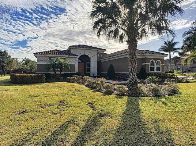 17112 4TH Avenue E, Bradenton, FL 34212 (MLS #A4207805) :: McConnell and Associates
