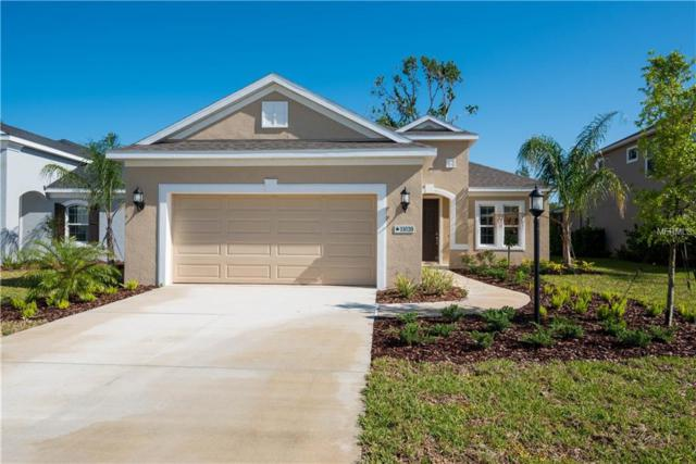 11020 Blue Magnolia Lane, Parrish, FL 34219 (MLS #A4211876) :: TeamWorks WorldWide