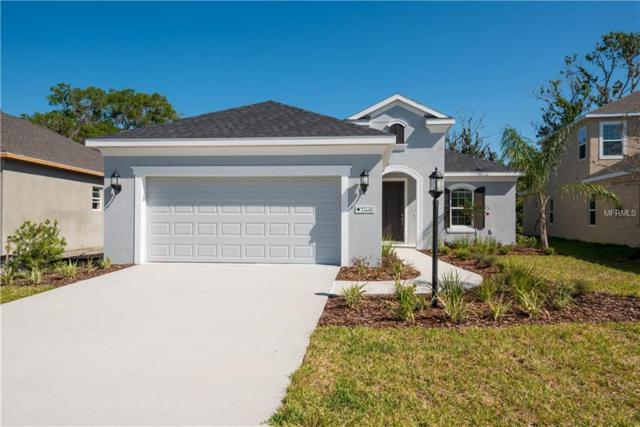 11016 Blue Magnolia Lane, Parrish, FL 34219 (MLS #A4213270) :: TeamWorks WorldWide