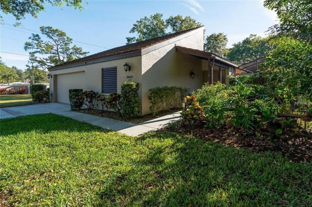 3830 Glen Oaks Manor Drive, Sarasota, FL 34232 (MLS #A4214248) :: The Duncan Duo Team