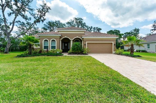 5406 132ND Terrace E, Parrish, FL 34219 (MLS #A4400549) :: TeamWorks WorldWide