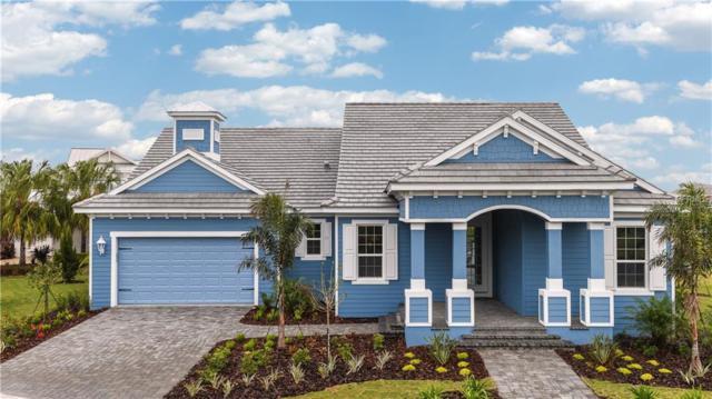 705 Manns Harbor Drive, Apollo Beach, FL 33572 (MLS #A4402743) :: Premium Properties Real Estate Services