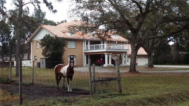 3035 61ST Street, Sarasota, FL 34243 (MLS #A4403410) :: Lovitch Realty Group, LLC