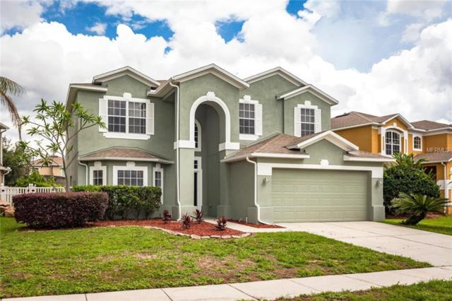 10137 Hidden Dunes Lane, Orlando, FL 32832 (MLS #A4403502) :: The Light Team