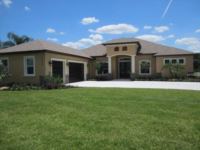 15415 Mulholland Road, Parrish, FL 34219 (MLS #A4408508) :: Team Virgadamo