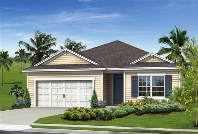 7574 Ridgelake Circle, Bradenton, FL 34203 (MLS #A4408781) :: Medway Realty