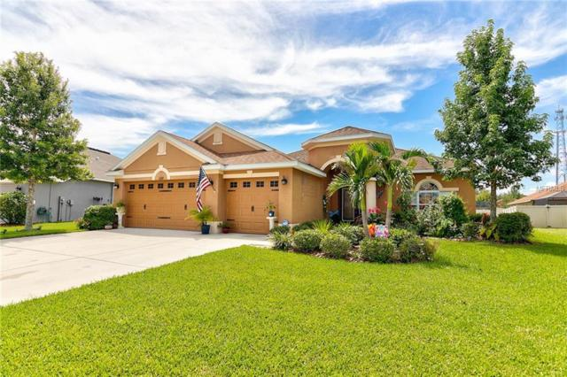 11327 78TH Street E, Parrish, FL 34219 (MLS #A4410065) :: Medway Realty