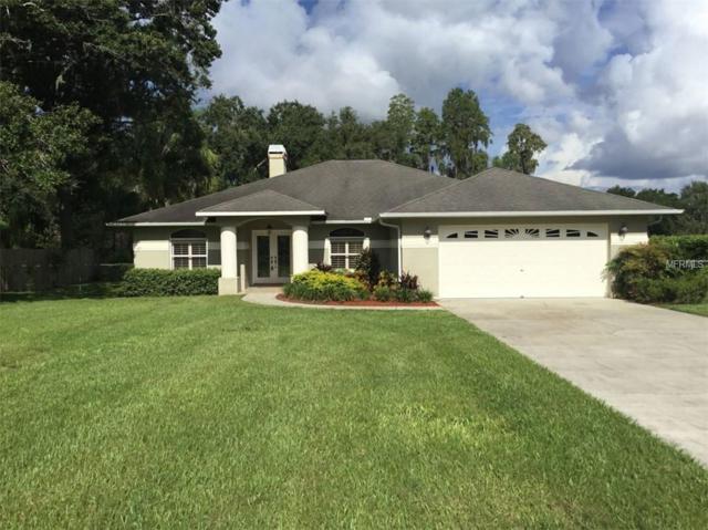19110 Forrest Drive, Odessa, FL 33556 (MLS #A4410208) :: RE/MAX CHAMPIONS