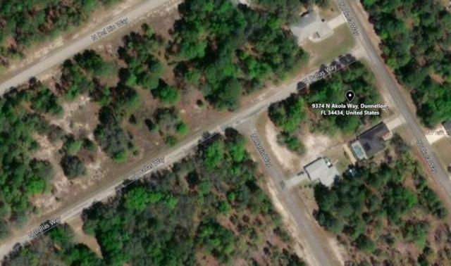 9374 N Akola Way, Citrus Springs, FL 34434 (MLS #A4411555) :: The Lockhart Team