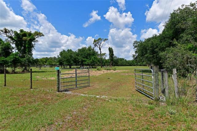 253, Myakka City, FL 34251 (MLS #A4413328) :: The Duncan Duo Team